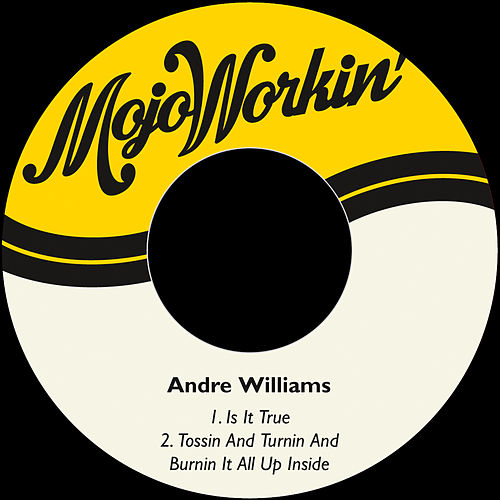 Is It True by Andre Williams