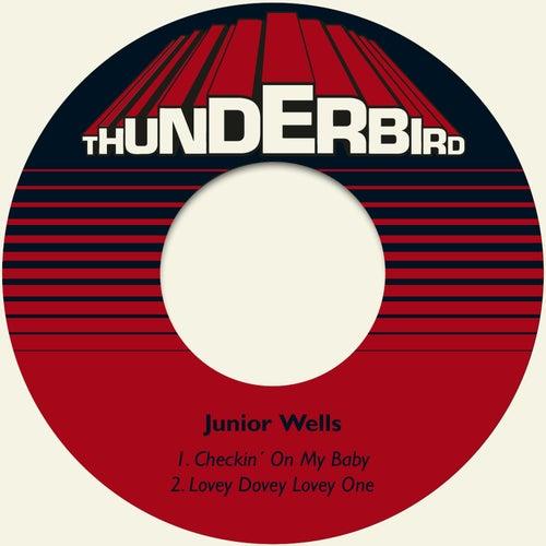 Checkin´ on My Baby de Junior Wells