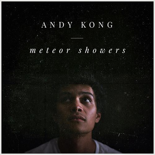 Meteor Showers by Andy Kong