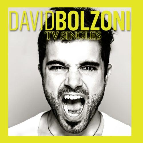 Canciones de Novelas/TV Singles de David Bolzoni