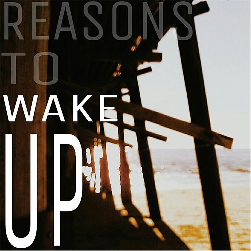 Reasons to Wake Up von Baer