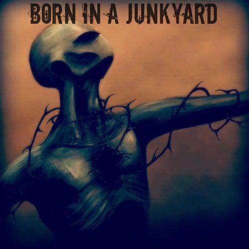 Born In A Junkyard von Amorphous