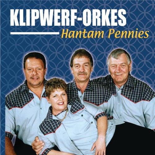 Hantam Pennies by Klipwerf Orkes