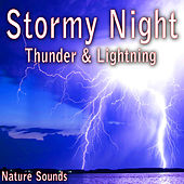Stormy Night: Thunder and Lightning (Nature Sounds) by Nature Soundscape