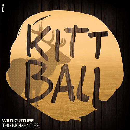This Moment EP by Wild Culture