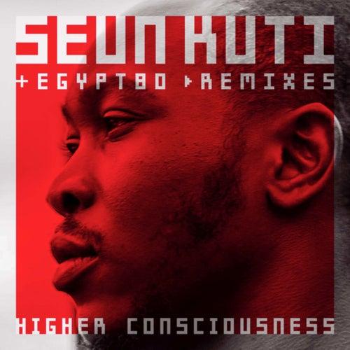 Higher Consciouness (remixes) von Seun Kuti
