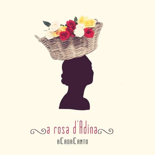 A Rosa D'Adina de ACadaCanto