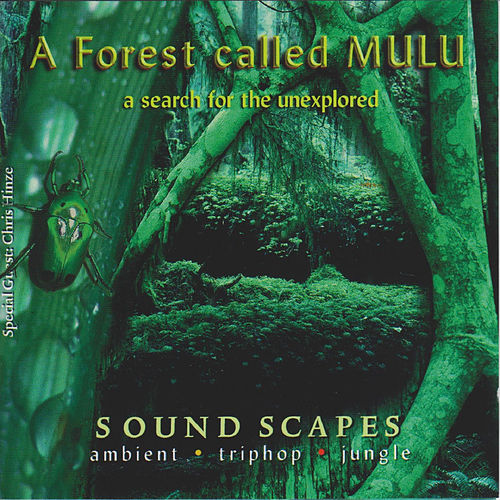 A Forest Called Mulu de Junkie XL