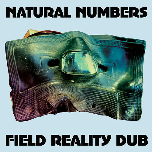 Field Reality Dub de Natural Numbers