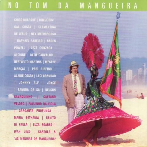 No Tom da Mangueira de Various Artists