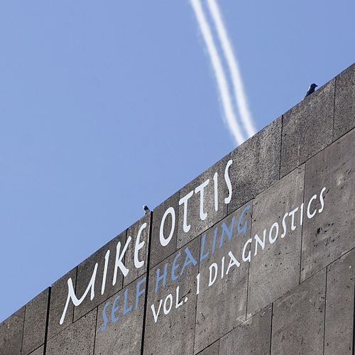 Selfhealing, Vol. 1 (Diagnostics) by Mike Ottis