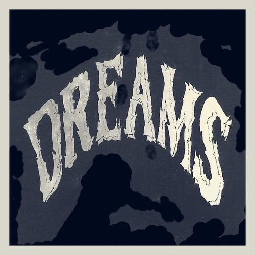 Dreams by The Dreams