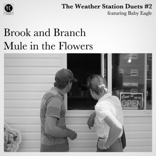 Duets #2 de The Weather Station