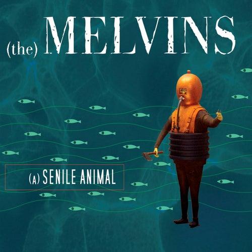 A Senile Animal de Melvins