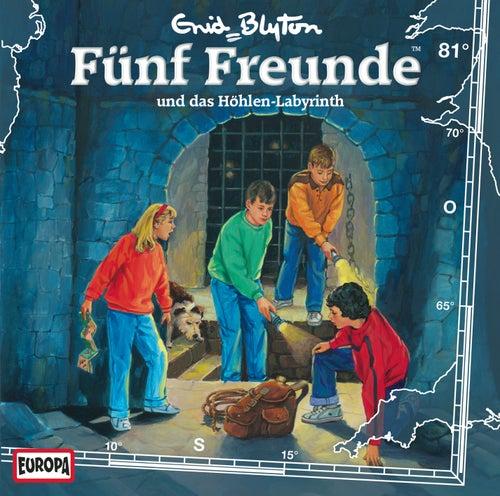 081/und das Höhlen-Labyrinth von Fünf Freunde