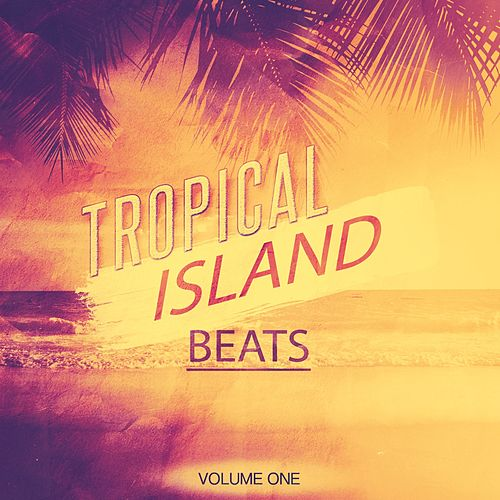 Tropical Island Beats, Vol. 1 (Finest Island Grooves) by Various Artists