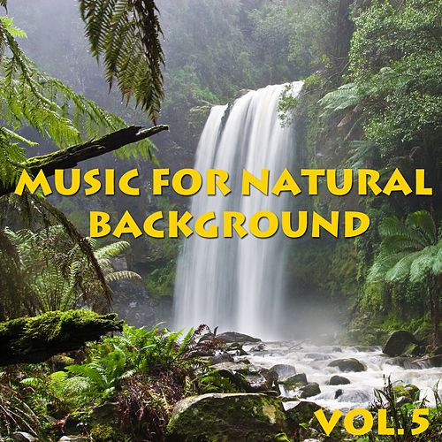 Music For Natural Background, Vol.5 by Spirit