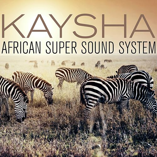 African Super Sound System (Remixes) by Kaysha