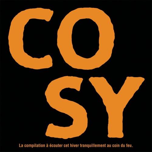 COSY - La compilation à écouter cet hiver tranquillement au coin du feu de Various Artists