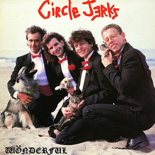 Wonderful by Circle Jerks
