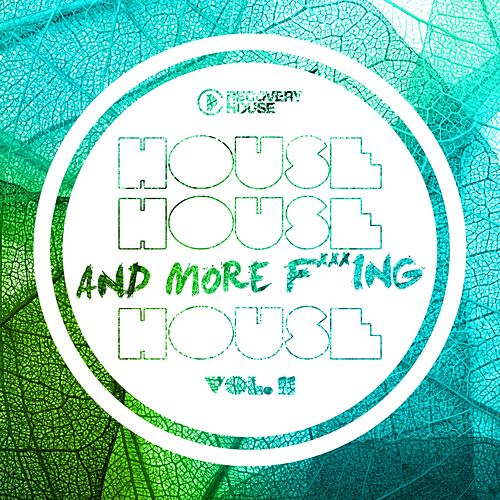 House, House And More F..king House, Vol. 11 de Various Artists