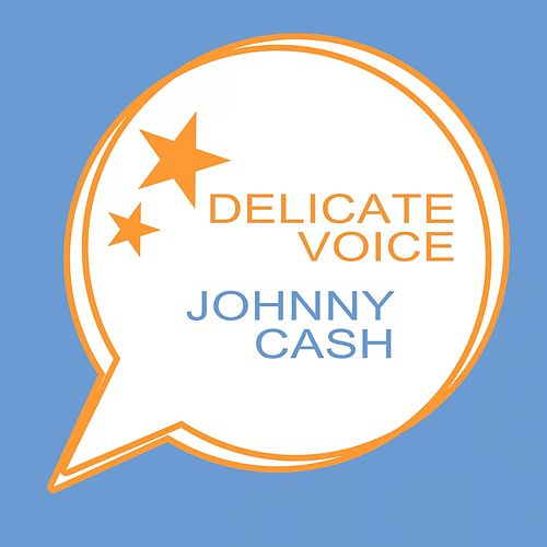 Delicate Voice by Johnny Cash