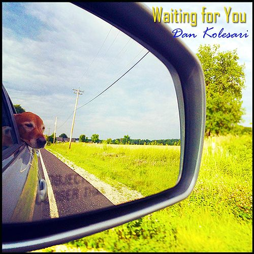 Waiting for You von Dan Kolesari