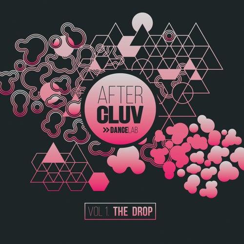 Aftercluv Dancelab The Drop (Vol. 1) de Various Artists