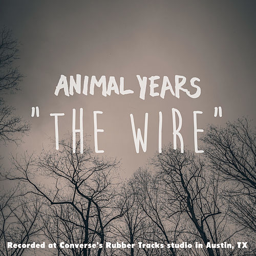 The Wire by Animal Years