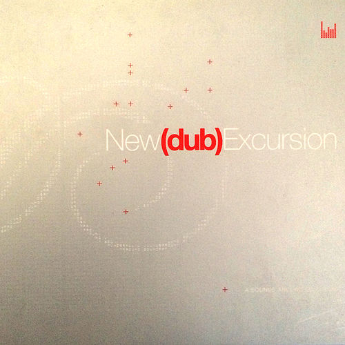 New (Dub) Excursion by Various Artists