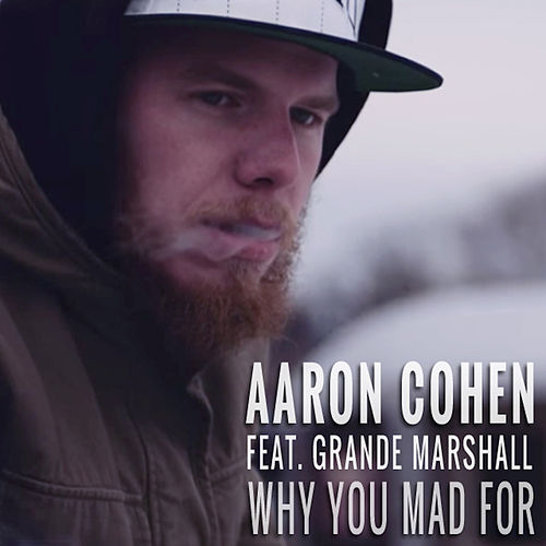 Why You Mad For by Aaron Cohen