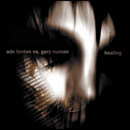 Healing de Ade Fenton