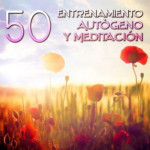 50 Entrenamiento Autògeno y Meditación - Música de Meditacion para la Ansiedad, Levantarse y Calmar la Mente, Sonidos para la Relajación Muscular y Wellness, Yoga, Reiki, Bien Estar, Pensamiento Positivo de Meditación Música Ambiente