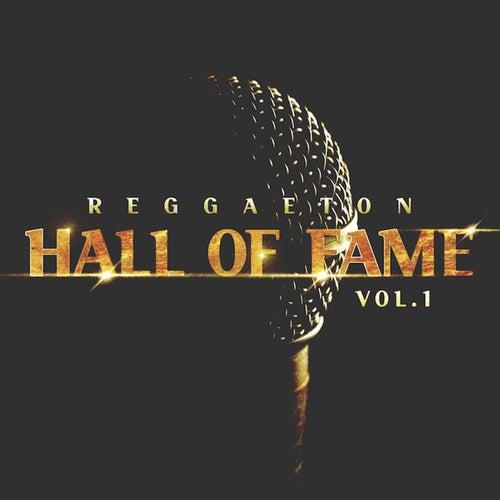 Reggaeton Hall of Fame, Vol. 1 de Various Artists