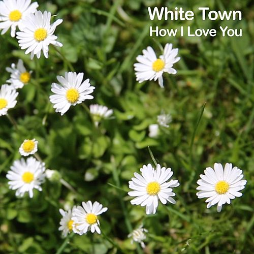 How I Love You de White Town