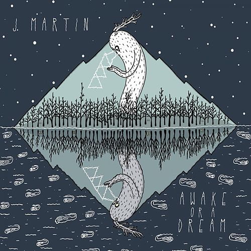 Awake or a Dream by J. Martin