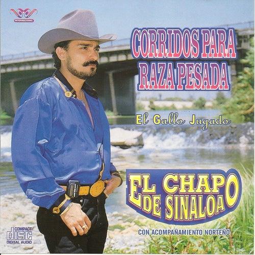 Corrido para la Raza Pesada by El Chapo De Sinaloa
