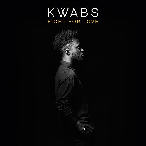 Fight For Love (Blonde Remix [Radio Edit]) von Kwabs