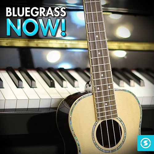 Bluegrass Now! de Various Artists