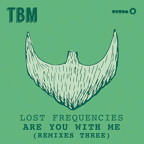 Are You With Me (Remixes Part 3) de Lost Frequencies