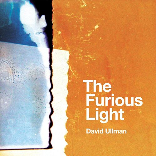 The Furious Light von David Ullman