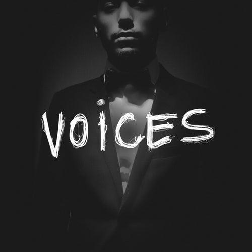 Voices de Rude Kid