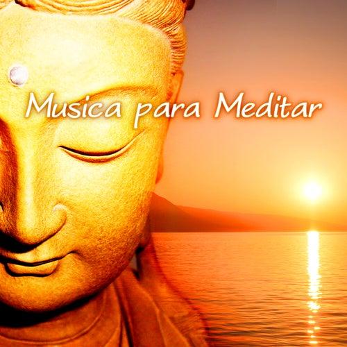 Musica para Meditar - Música de Meditacion para la Ansiedad, Clases de Yoga y Reiki, Levantarse y Calmar la Mente, Musicoterapia, Paz Interior de Various Artists