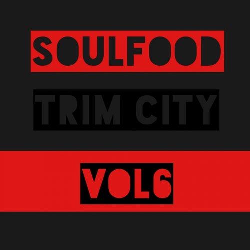 Soulfood, Vol. 6: Trim City by Trim