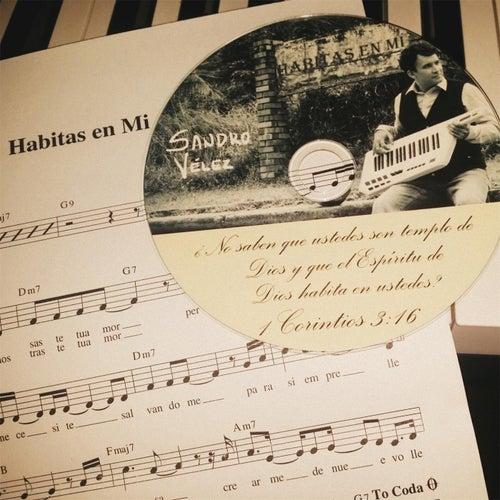 Habitas en Mi (Instrumental) by Sandro Velez