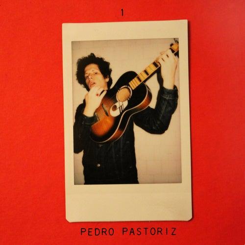 1 by Pedro Pastoriz