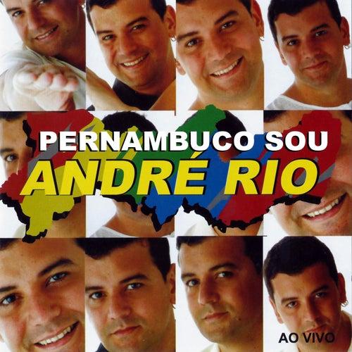 Pernambuco Sou (Ao Vivo) de André Rio