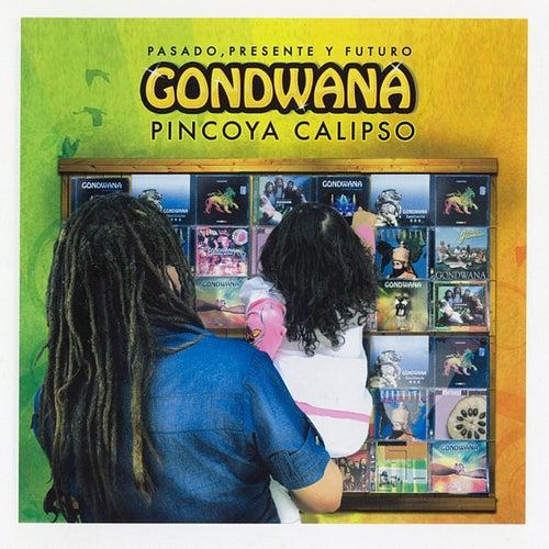 Pincoya Calipso - Pasado, Presente, y Futuro by Gondwana