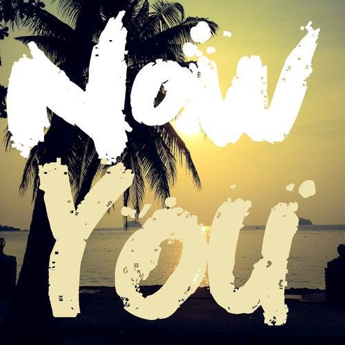 Now You (feat. Albin Loán) de Lucas Estrada