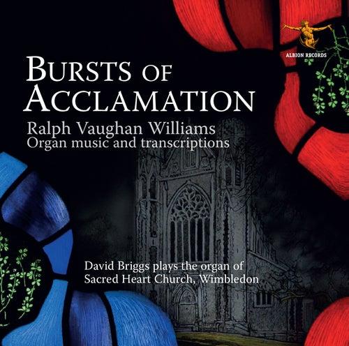 Bursts of Acclamation von David Briggs